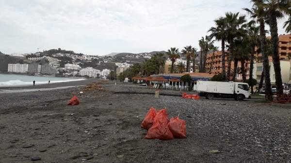 Limpian playas en Almuñécar (Granada)