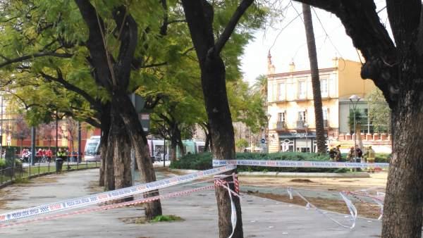 Actuaciones de los Bomberos ante el temporal junto a la calle San Fernando