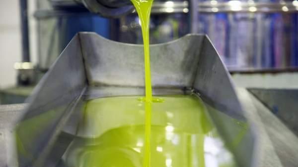 Almazara prodiciendo aceite de oliva