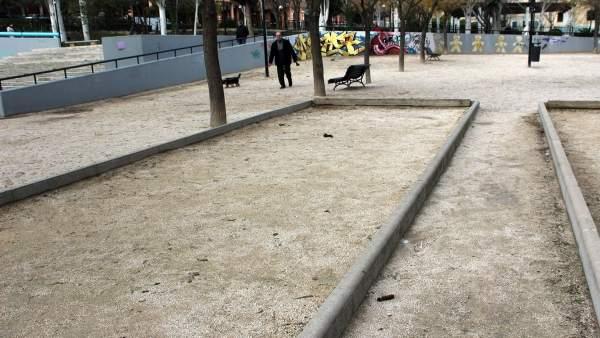 Excrementos de perro en el parque