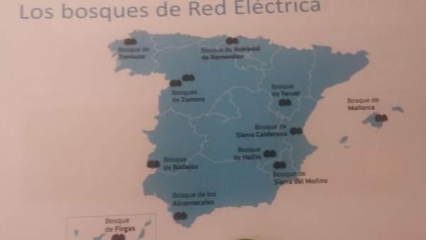 Mapa de bosques de REE