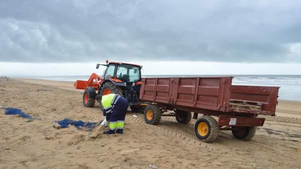 Limpieza en la playa de Punta Umbría.