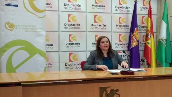 Carrillo presenta la convocatoria de eficiencia energética