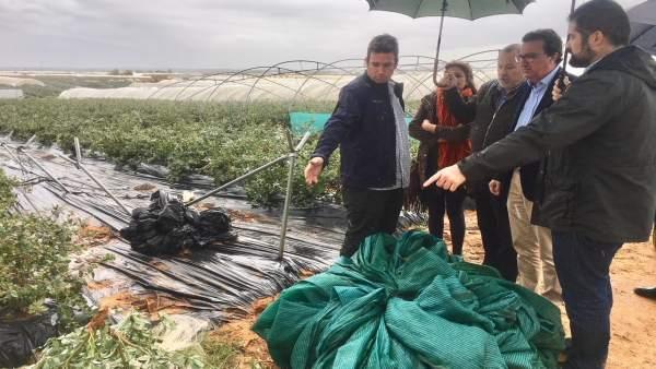 Manuel Andrés González visita una explotación agrícola.