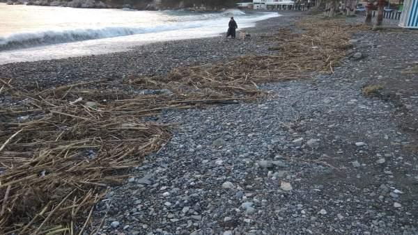 Playa de La Herradura tras el temporal