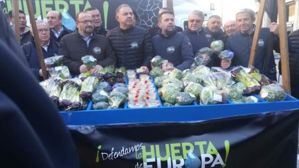 Manifestación en Madrid de regantes de Murcia, Alicante y Almería