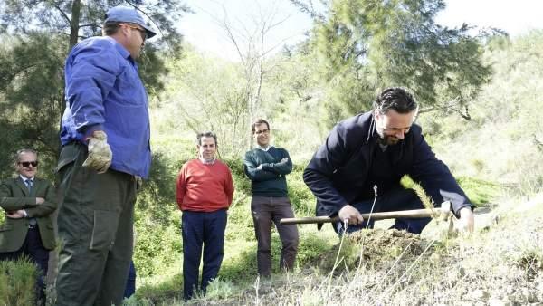 Raúl Jimenez en una reforestación
