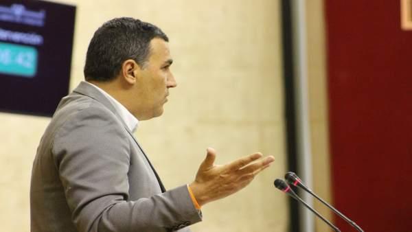 El diputado de Ciudadanos por Málaga, Carlos Hernández White