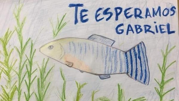 Pez en apoyo a Gabriel