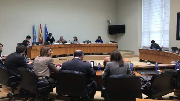 Comisión de Igualdade