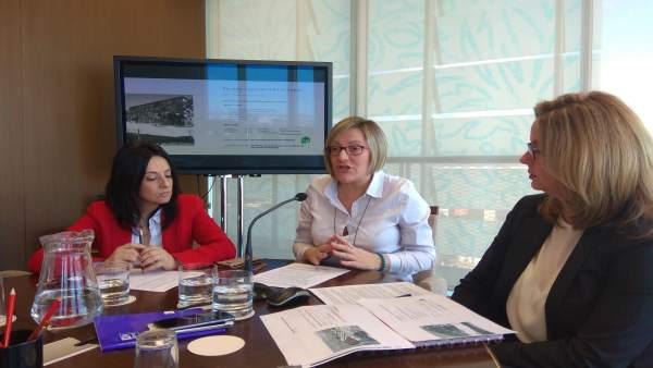 """El Consell cedirà parcel·les per a vivendes en lloguer """"assequible"""""""