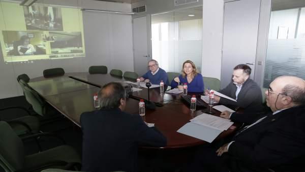 Oria participa por videoconferencia en el Consejo Consultivo