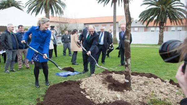 Plantación de retoño del Árbol de Gernika en Hospital de Bermeo