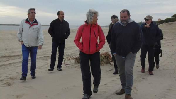 Representantes de IULV-CA visitan la playa de El Portil.