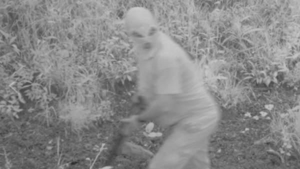 Un cazador furtivo en Asturias