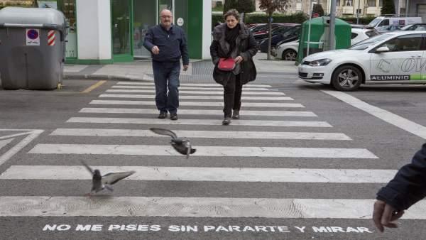 Campaña en pasos de peatones de Camargo