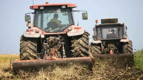 Tractores, máquinas, agricultura, maquinaria agraria, huerta, labrar, campo