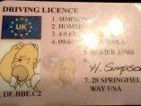 Permiso de conducir de Homer Simpson