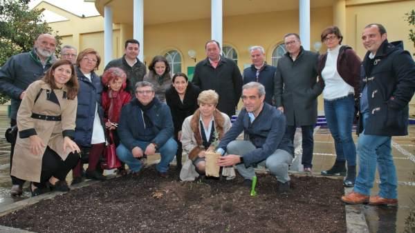 Plantación de 'La bellota más grande Los Pedroches'