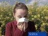 Así están los niveles de polen en España