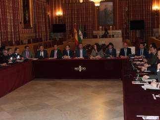 Reunión del Cecop de Sevilla este Domingo De Ramos