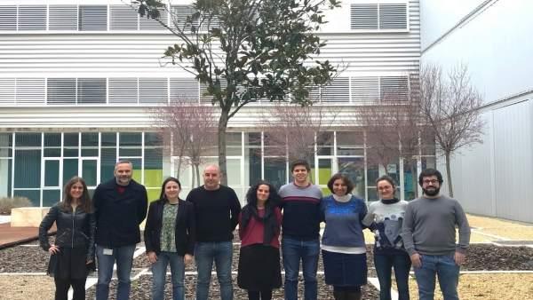 Investigadores del ICMA para introducir material genético en las células