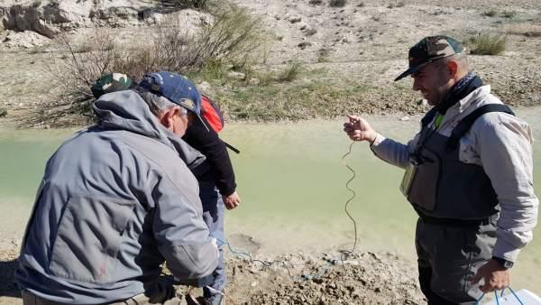 Voluntarios realizan un muestreo en el río Alcaide