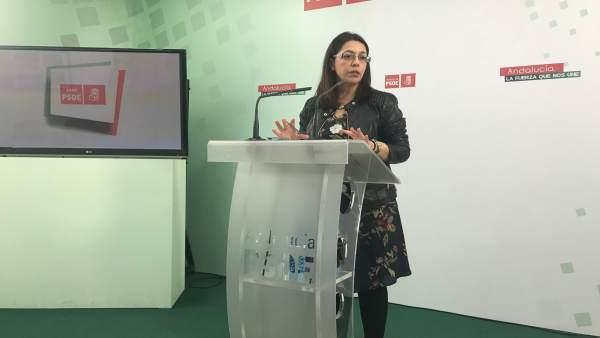 La concejala del PSOE en Jaén África Colomo aborda la situación de Somuvisa.
