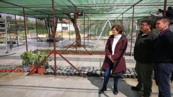Amparo Pernichi visita los trabajos