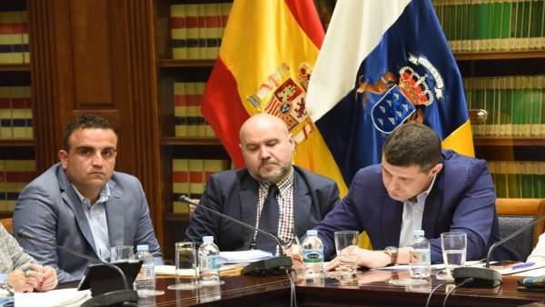 Comparecencia del presidente del CERMI en el Parlamento de Canarias