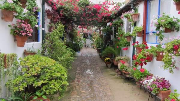 Los patios son un atractivo turístico de Córdoba en distintas épocas del año