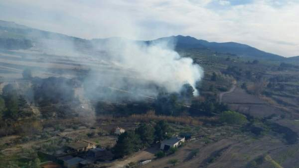 Imagen del lugar del incendio declarado en los márgenes del pequeño río Benidorm