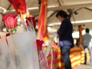 Fotografía de unas rosas el día de Sant Jordi.