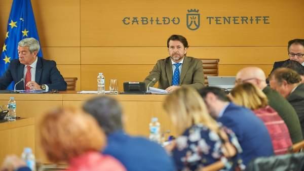 Pleno del Cabildo
