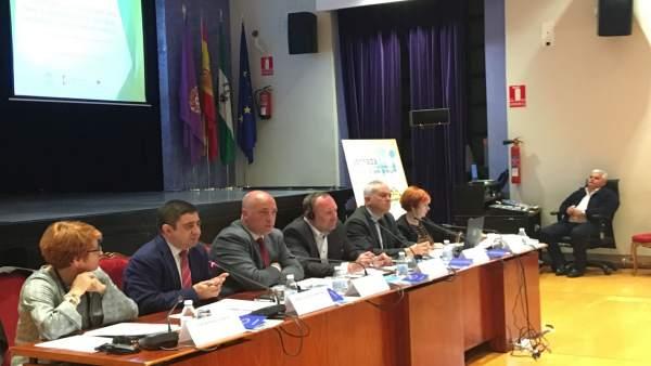 Reyes interviene en la jornada sobre estrategias de lucha contra la despoblación