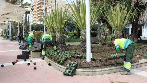 Zonas verdes en Estepona