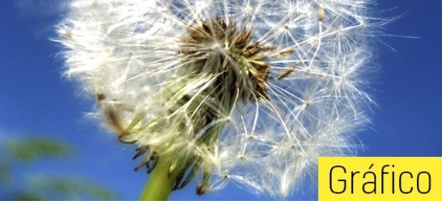 Calendario para alérgicos
