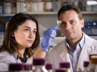Los investigadores Hanie Yousefi y Thid Didar