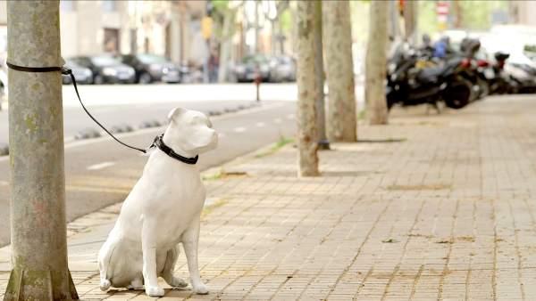 Figura de un perro abandonado de la campaña del Ayuntamiento de Barcelona