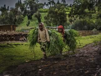 Niñas trabajando Etiopía.