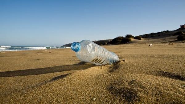 Resultado de imagen para plastico bacterias marinas