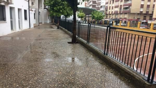 PP reclama una mejora en el CEIP Ciudad Jardín de Córdoba