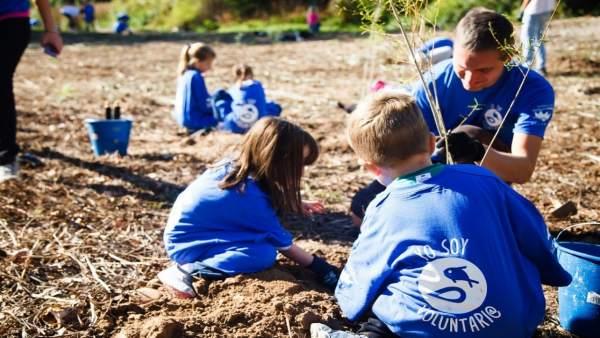 Voluntariso medioambientales