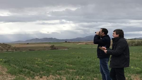 Regantes de Caniles plantean medidas para la recuperación de aves esteparias