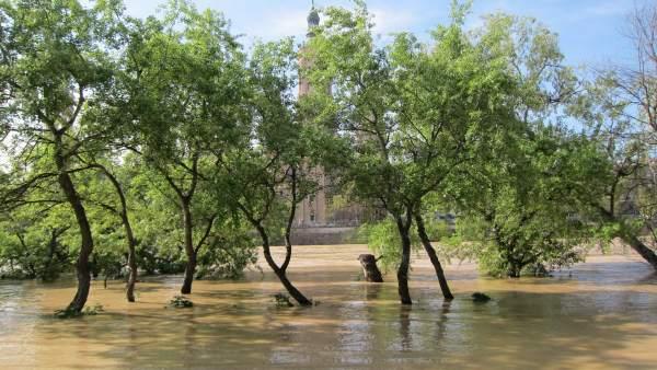 Crecida del Ebro a su paso por Zaragoza.