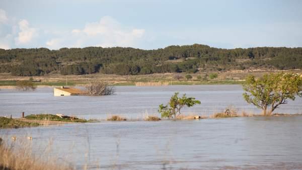 Río Ebro a su paso por Novillas.