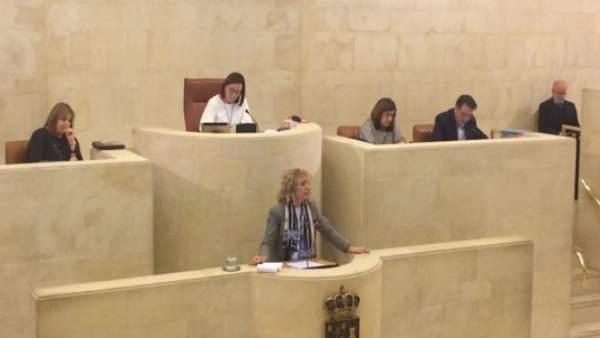 Eva Díaz Tezanos en el Pleno del Parlamento