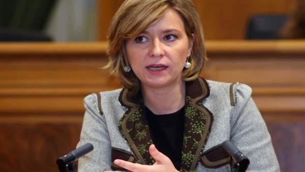 María Llanos Castellanos, PSOE