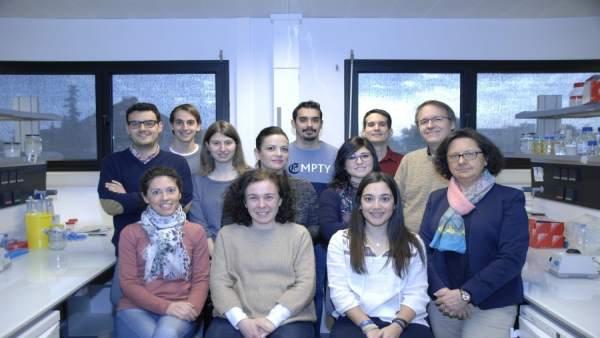 Grupo de investigación, liderado por la catedrática María Teresa Roldán