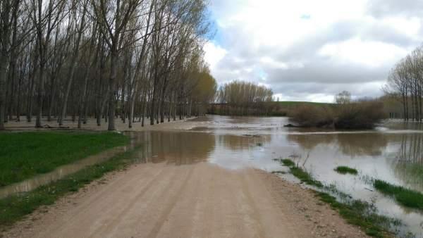 El río Eresma desbordado en Hontanares. 17-4-2018